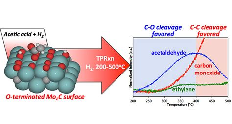 Heterogeneous Catalysis for Thermochemical Conversion
